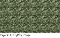 Fuzzykey_image